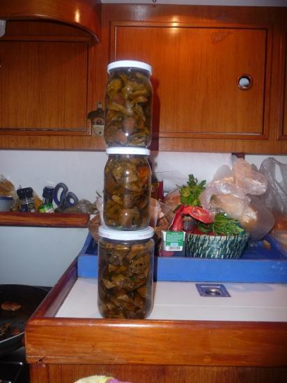 conserve de champignons