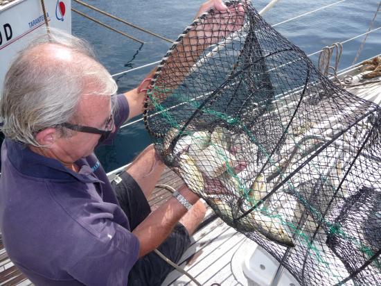 la pêche miraculeuse !