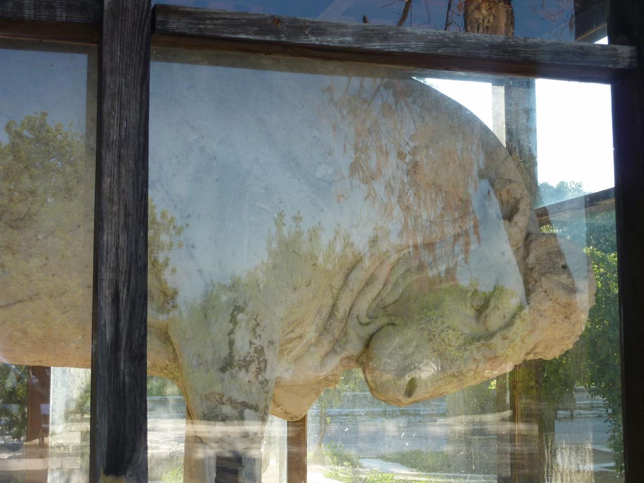 monumental taureau trouvé par un pêcheur