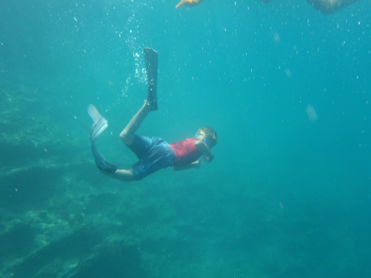 Cousteau bis
